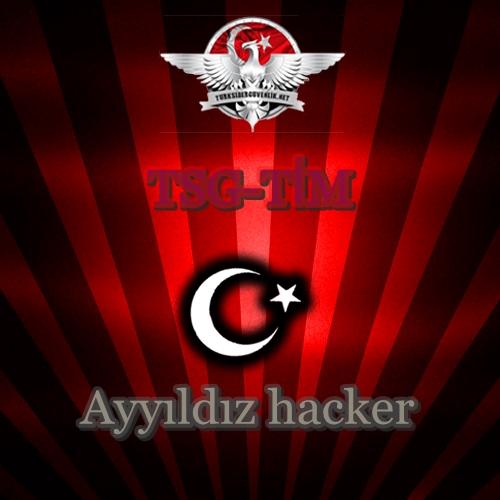 Hackedayyldztsg.jpg - 123.79 KB
